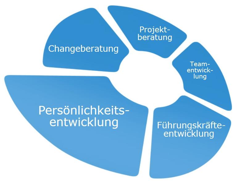 Michael Schwartz Managementberatung Change Projekte